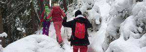 balade en raquettes à neige