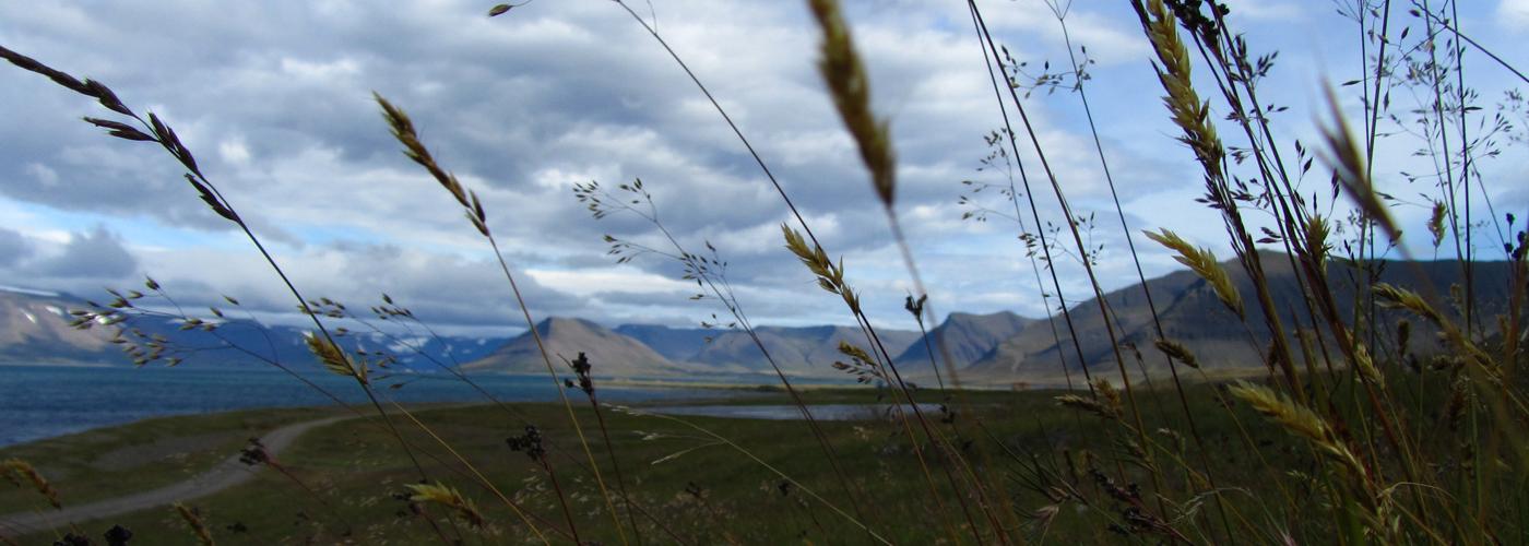 fjords du nord en Islande